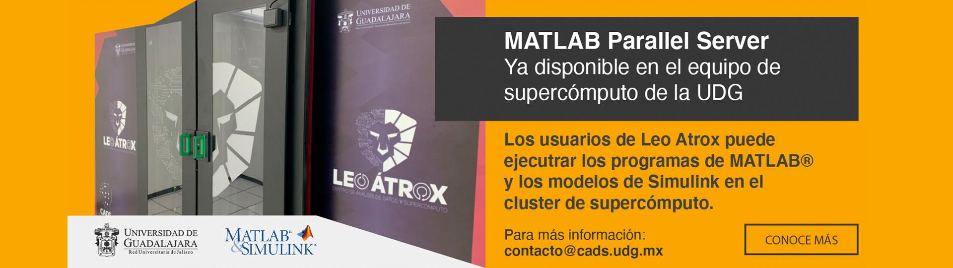 MatLab Paralle Server